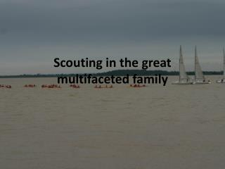 Scouting in the great multifaceted family