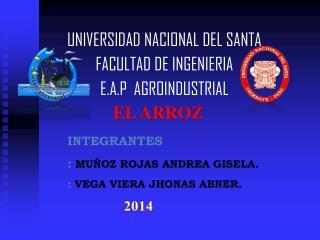 UNIVERSIDAD  NACIONAL DEL SANTA  FACULTAD DE INGENIERIA  E.A.P  AGROINDUSTRIAL