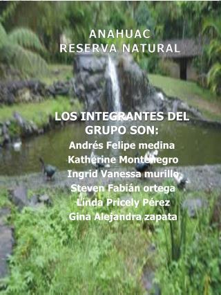 LOS INTEGRANTES DEL GRUPO SON: Andr�s Felipe medina Katherine Montenegro Ingrid Vanessa murillo