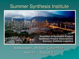 Summer Synthesis Institute