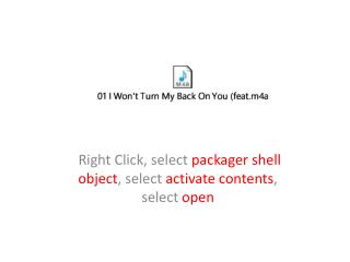 Right Click, select  packager shell object , select  activate contents , select  open