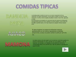 COMIDAS TIPICA S