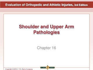 Biomechanics of Orthopedic Injuries