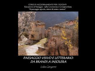 PAESAGGIO VISIVO E LETTERARIO: DA BRANDI A INSOLERA Lidia  Cangemi
