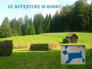 Le avventure di  bobby …