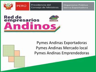 Pymes  Andinas Exportadoras Pymes Andinas Mercado local Pymes Andinas Emprendedoras