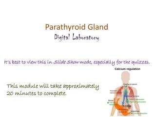 Parathyroid Gland Digital Laboratory