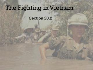 The Fighting in Vietnam