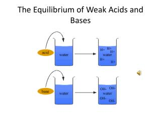 The Equilibrium of Weak Acids and Bases