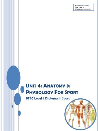 Unit 4: Anatomy & Physiology For Sport