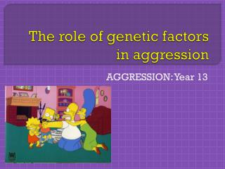 The role of genetic factors in aggression
