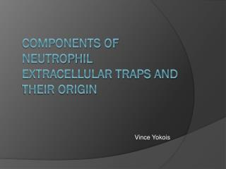 Components of Neutrophil Extracellular Traps and their Origin