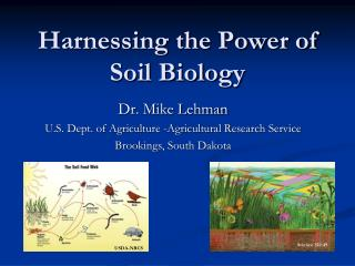 Harnessing the Power of Soil Biology