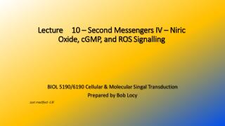 Lecture  	10  – Second Messengers  IV  – Niric  Oxide,  cGMP , and ROS  Signalling