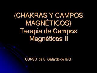 (CHAKRAS  Y  CAMPOS MAGNÉTICOS) Terapia de  Campos Magnéticos II