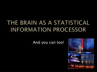 The Brain as a statistical Information Processor