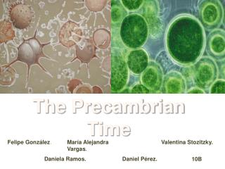 The Precambrian Time