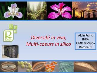 Diversité in vivo,  Multi- coeurs  in silico