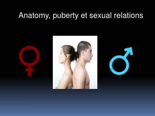 Anatomy ,  puberty  et  sexual  relations