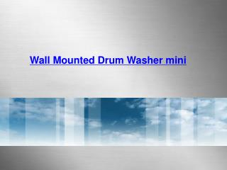 Wall Mounted Drum Washer mini