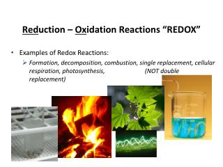 "Red uction –  Ox idation Reactions ""REDOX"""