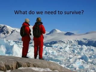 What do we need to survive?