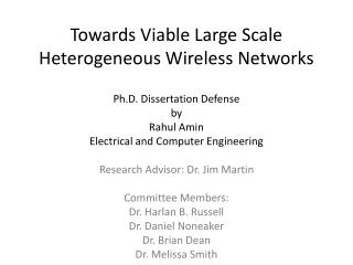 Towards Viable Large Scale Heterogeneous Wireless Networks