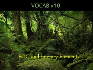 VOCAB #10