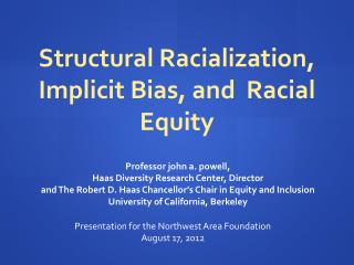 Professor john a. powell,  Haas Diversity Research Center, Director