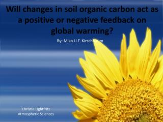 Will changes in soil organic carbon act as a positive or negative feedback on global warming?