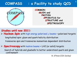 COMPASS    : a Facility to study QCD
