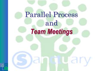 Parallel Process and Team Meetings