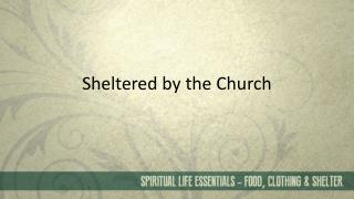 Sheltered by the Church