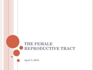 THE FEMALE REPRODUCTIVE TRACT
