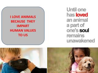 I LOVE ANIMALS BECAUSE  THEY IMPART HUMAN VALUES TO US