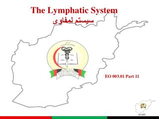 The  Lymphatic System سيستم لمفاوى