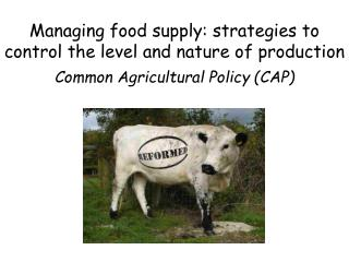 Managing food supply: strategies to control the level and nature of production