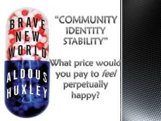 """COMMUNITY IDENTITY STABILITY"" What price would you pay to  feel  perpetually happy?"