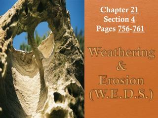 Weathering &  Erosion (W.E.D.S.)