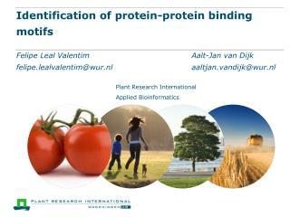 Identification  of  protein-protein binding  motifs