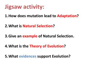 Jigsaw activity: How does mutation lead to  Adaptation ? What is  Natural Selection ?