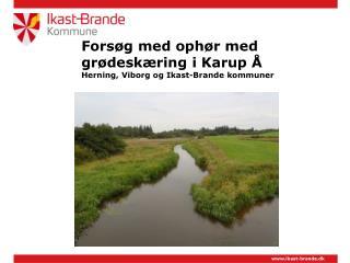 Forsøg med ophør med grødeskæring i Karup  Å Herning, Viborg og Ikast-Brande kommuner