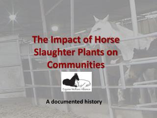 The Impact of Horse Slaughter Plants on Communities