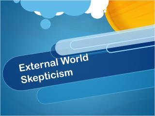 External World Skepticism