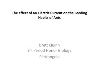 The effect of an  Electric Current  on the  Feeding Habits of Ants