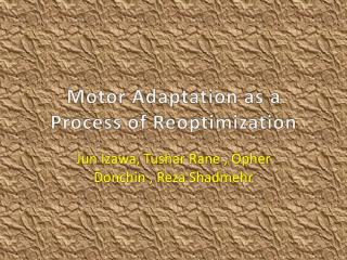 Motor Adaptation as a Process of Reoptimization