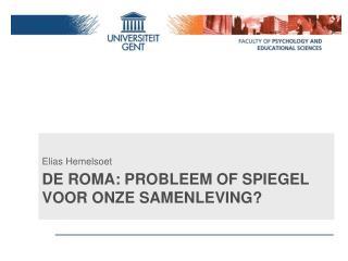 De Roma:  Probleem  of Spiegel  voor onze samenleving ?