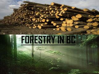 FORESTRY IN BC