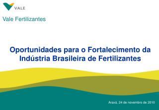Oportunidades para o Fortalecimento da  Ind stria Brasileira de Fertilizantes