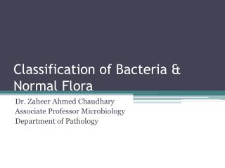 Classification of Bacteria &  Normal Flora